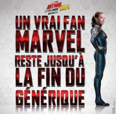 ant-man-2-ant-man-et-la-guepe-5b51edcfc90fd