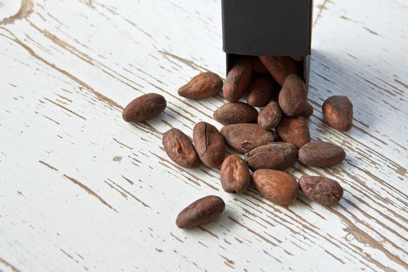 Graine de cacao