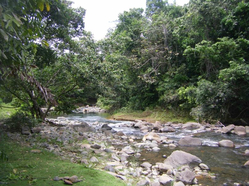 rivière du jardin d'eau