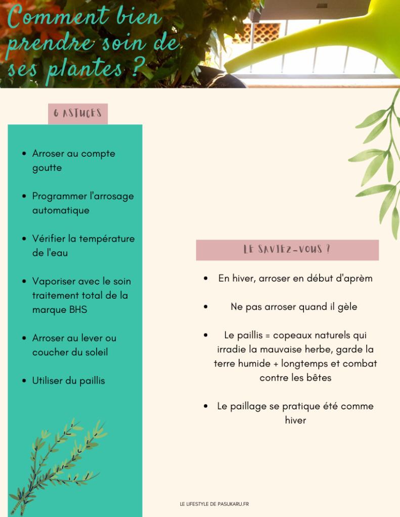CV prendre soin de ses plantes d'extérieur