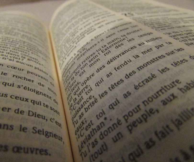 Quels plans de lecture biblique adopter ?