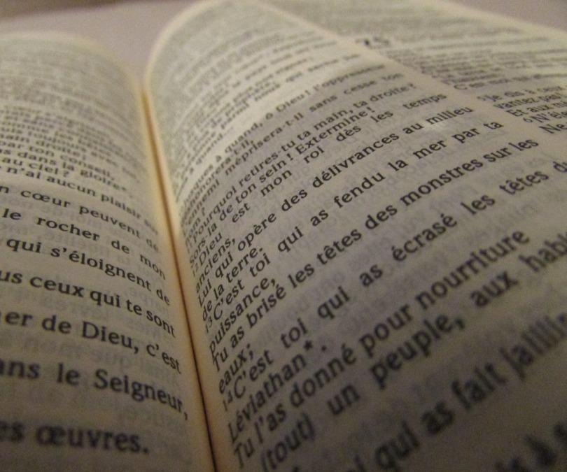 Quels plans de lecture biblique adopter ?