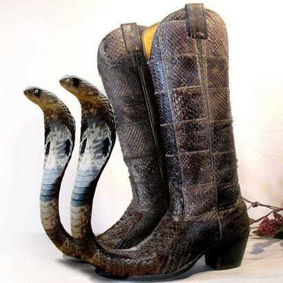 Chaussures à bout de serpent (c) Odah Nicullah