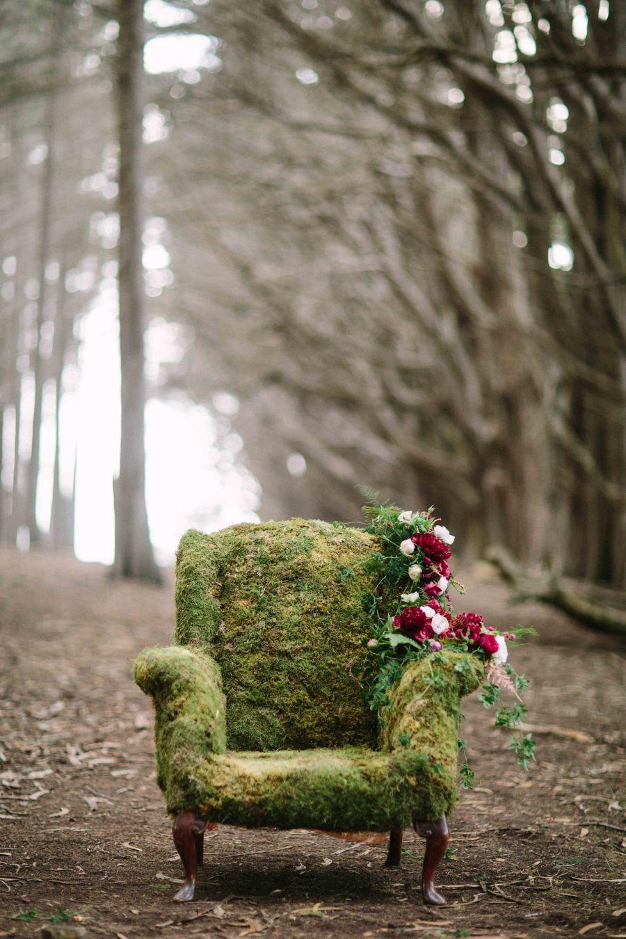 Chaise recouverte de lichens et de mousse