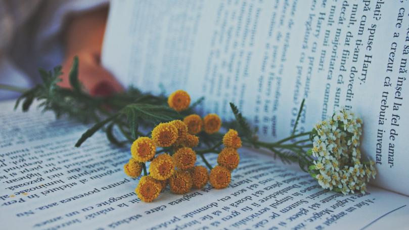 15 biographies et autobiographies palpitantes à lire pendant ces week-ends en été 2021