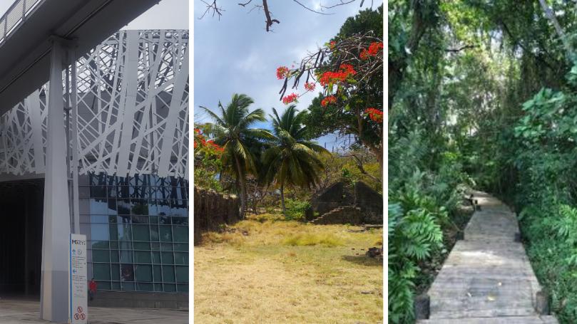 Top 10 des activités insolites à faire en Guadeloupe
